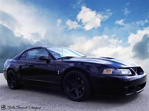 03 Cobra Terminator   Mustang cobra