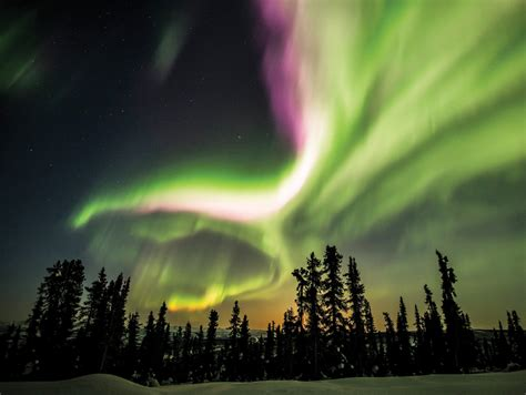 northern lights cruise december 2017 12 must have experiences in canada femina in