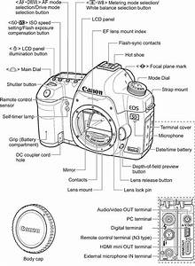 Eos 5d Mark Ii Information And Updates
