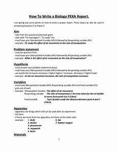 essay mm ui paper globe employment network business plan