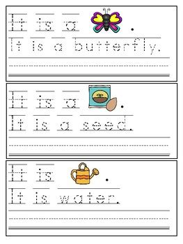 spring trace write sight word sentences  karlys