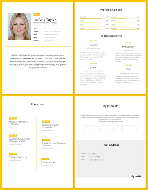 word resume template  software developers good
