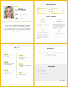 Proper Layout For A Resume Free Word Resume Template For Software Developers Good