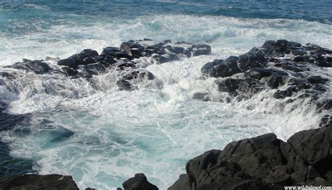 Queens Bath On North Shore Of Kauai Fit For Royalty Or