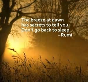 Rumi Quote Poem
