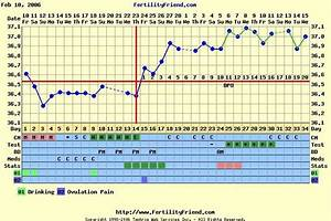 Bbt Chart Of Woman Pin On Pregnancy And Labor