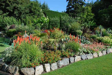 mediterranean garden pictures 13 best images about mediterranean garden on pinterest gardens landscaping and pictures of