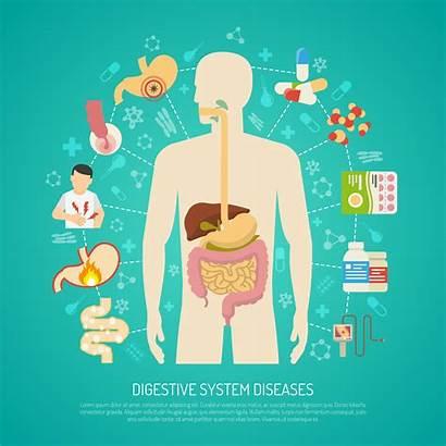 Digestive System Diseases Vector Illustration Clipart Vectors
