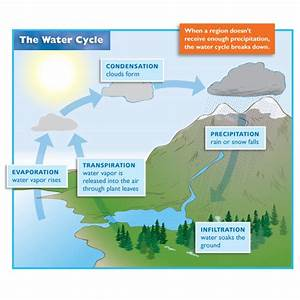 investigating the water cycle captain planet foundation