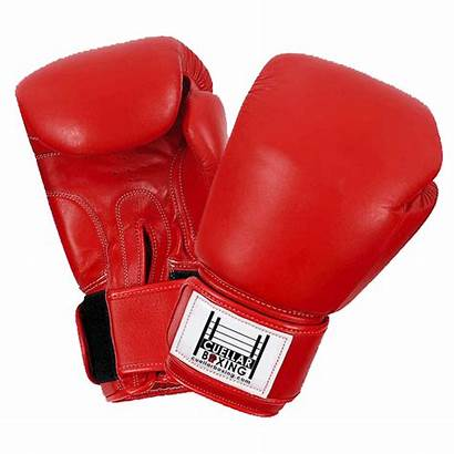 Boxing Gloves Transparent Clipart Freepngimg