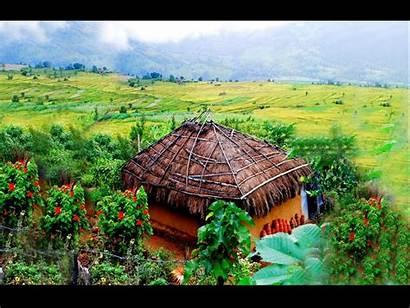 Munnar Places Visit India Tour Hill Kerala