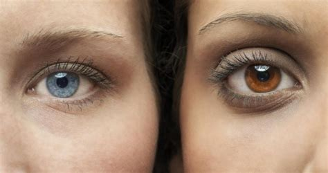 can you change eye color healthy foods that can change your eye color womans vibe