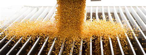 corn  grains council