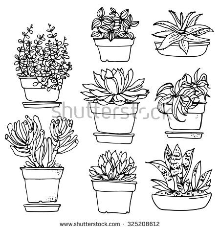 flower  drawing stock  images pictures