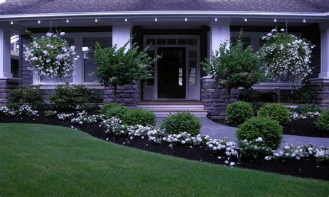 gorgeous low maintenance front yard landscaping flowers