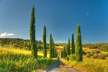 Country Road Desktop Tuscany Nature Cottage Background