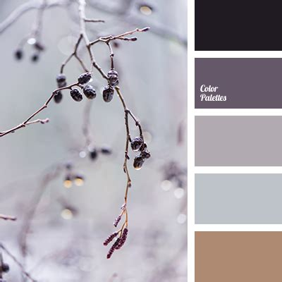 beige black and purple blue gray brown with a hint of