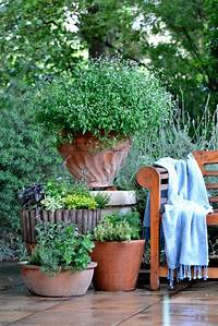 garden design ideas Small garden ideas: growing herbs in pots | SA Garden and Home