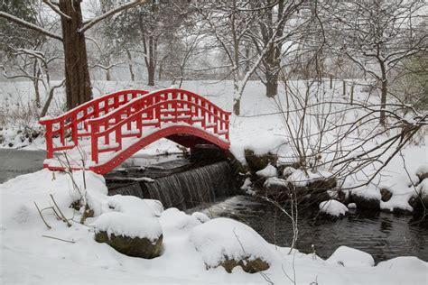 japanese bridge cranbrook center  collections