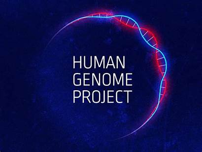 Genome Human Project Animated Animation Dribbble Step
