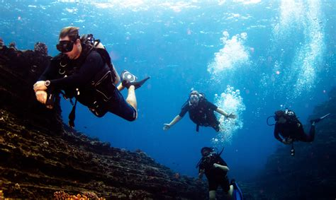 dive in scuba diving kauai blue dolphin charters