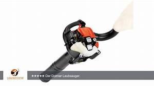 Laubsauger Test Benzin : dolmar 701252350 benzin laubsauger pb 252 4 v kw erfahrungsbericht review test youtube ~ Eleganceandgraceweddings.com Haus und Dekorationen
