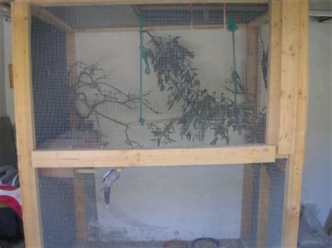 voliere exterieur fait maison voliere exterieur fait maison sous le pr 233 au de pigeons paons