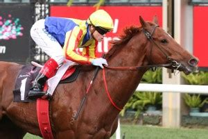 spieth to entice everest interest in concorde stakes