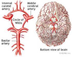 Stroke Related to Cocaine Use Background - Stroke Related to Cocaine ... Stroke related to cocaine use
