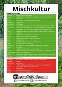 Aussaatkalender 2017 Pdf : mischkultur ~ Whattoseeinmadrid.com Haus und Dekorationen