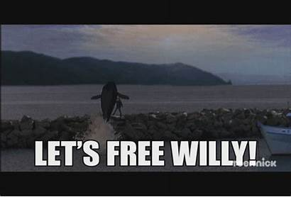 Willy Every Should Generic Millennial Whale Buying