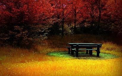 Fall Wallpapers Stunning Ipad Bing Background Autumn