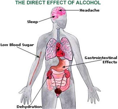 home remedies  hangover  symptoms treatment diet