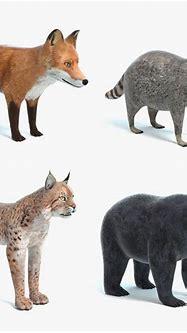 3D animal pbr black - TurboSquid 1197525
