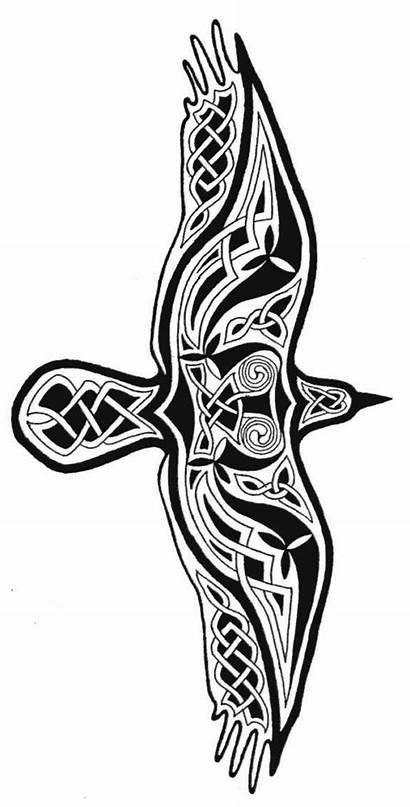 Celtic Tattoo Designs Raven Crow Knot Patterns