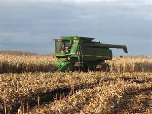 Corn Harvest | Roger's Ramblings