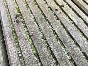 Moos Aus Fugen Entfernen : balkonboden reinigen sch ner balkon ~ Lizthompson.info Haus und Dekorationen