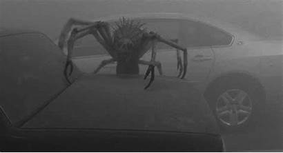 Mist Spider Giant Gifs King Stephen Insect