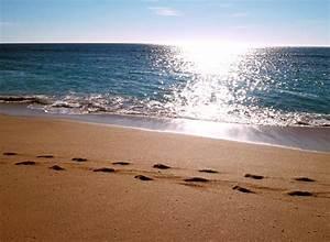 Bilder Meer Strand : spuren im sand 1 0 foto bild landschaft meer strand natur bilder auf fotocommunity ~ Eleganceandgraceweddings.com Haus und Dekorationen