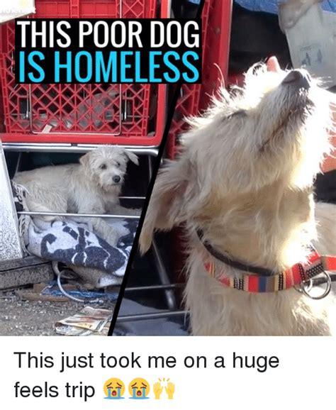 Feel Trip Meme - 25 best memes about feel trip feel trip memes