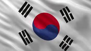 South Korean Flag Stock Footage Video