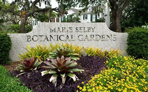 selby botanical gardens most beautiful places in florida 2018 top 10 list