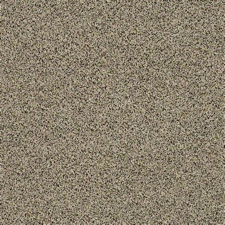 buy angora classic 1 by shaw texture carpets in
