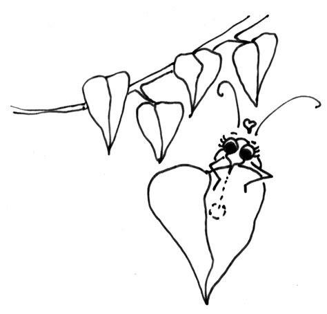 Drawn Bug Pinart Vespa Mandarinia Scientific