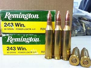 243 Winchester Rifle Ammo: Factory Loaded Bullets ...
