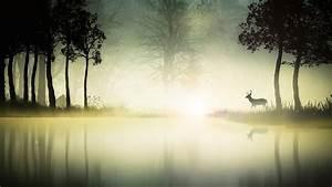 digital, art, , fantasy, art, , animals, , deer, , nature, , landscape