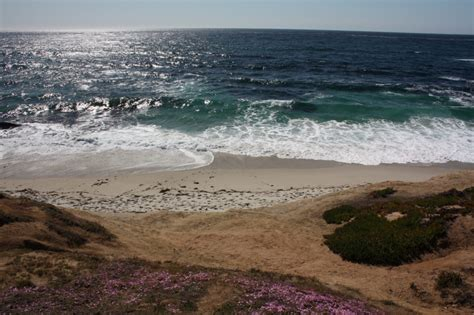 Wipeout Beach, La Jolla, Ca  California Beaches