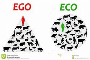 Riviera Nayarit  Ego Vs  Eco