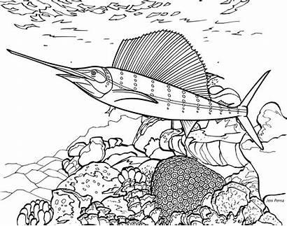 Coloring Fish Coral Reef Ocean Evantai Pestele