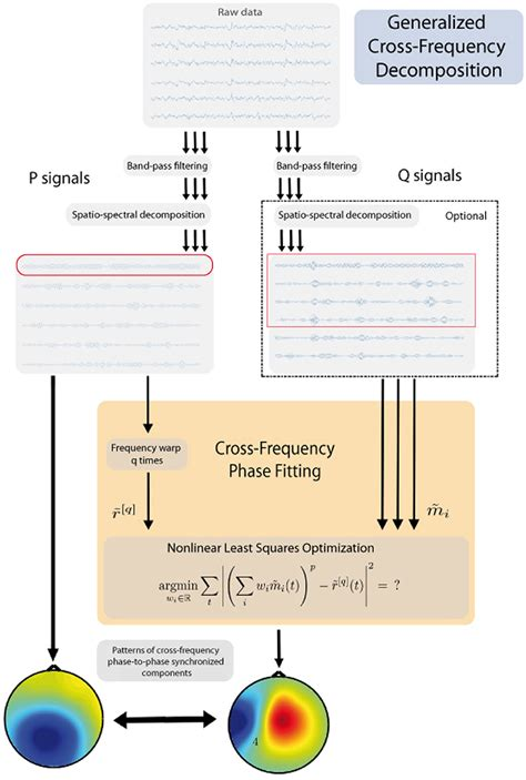 frontiers generalized cross frequency decomposition  method   extraction  neuronal